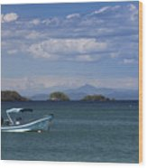 The Waters Of Coiba Wood Print