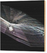 The Web We Weave Wood Print