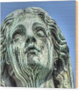 The Weeping Sculpture Wood Print
