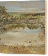 The Westfern Pond Wood Print