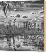 The Wetlands Wood Print