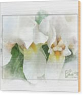 The Whispering Irises Wood Print