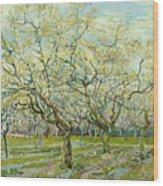 The White Orchard  Wood Print