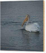 The White Pelican 1 Wood Print