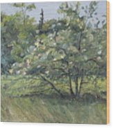 The Wild Apple Tree Wood Print
