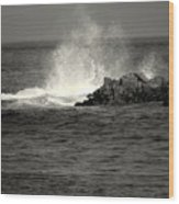The Wild Pacific In Black And White Two Wood Print