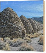 The Wildrose Charcoal Kilns Wood Print