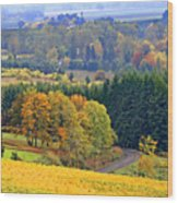 The Willamette Valley Wood Print by Margaret Hood