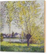 The Willows Wood Print