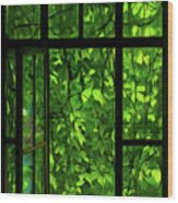 The Window Wood Print by Dale Jackson