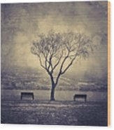 The Winter And The Benches Wood Print