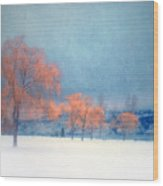 The Winter Blues Wood Print