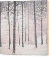 The Winter Forest Wood Print