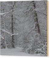 The Winter Path Wood Print