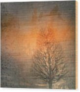 The Winter Still Wood Print