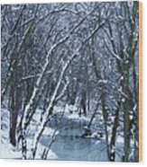 The Winter Stream  Wood Print
