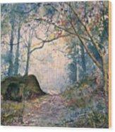 The Wishing Stone Wood Print