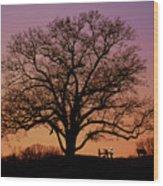The Witness Wood Print