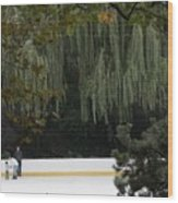 The Wollman Rink Wood Print