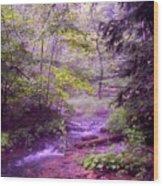 The Wonder Of Nature Wood Print