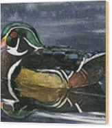 The Wood Duck Wood Print