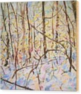 The Woods With Snow Wood Print