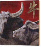The Year Of The Ox... Wood Print