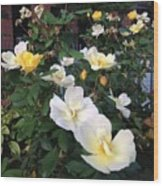The Yellow Roses Of Fulton Street Wood Print