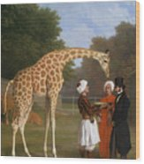The Zoological Garden Wood Print
