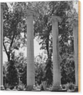 Theatre Columns Wood Print