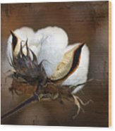 Them Cotton Bolls Wood Print