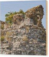 Theodosian Walls - View 1 Wood Print