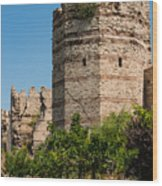 Theodosian Walls - View 3 Wood Print