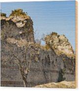 Theodosian Walls - View 7 Wood Print