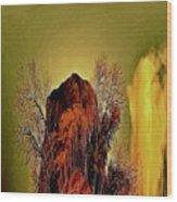 Theophany Wood Print