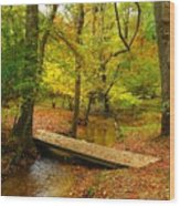 There Is Peace - Allaire State Park Wood Print
