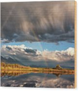 Theres A Rainbow In Every Storm Wood Print