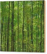 Thick Forrest Wood Print