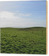 Thick Grass Field Abutting The Cliff's Of Moher In Ireland Wood Print