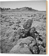 Thick Moss Covered Lava Fields At Hellisheidi Due To The Hengill Volcano Iceland Wood Print