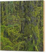 Thick Rainforest Wood Print