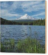 Thillium Lake And Mt Hood Wood Print