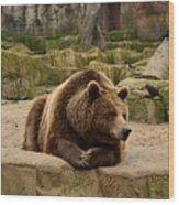 Thinker Bear Wood Print