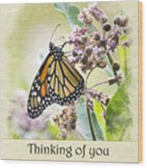 Thinking Of You Monarch Butterfly Greeting Card Wood Print
