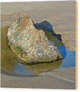 Third Study Of A Rock Wood Print