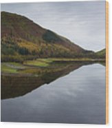 Thirlmere From A Low Altitude Wood Print