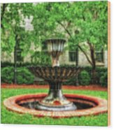 Thirsty Fountain  -  Louky812 Wood Print