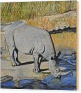 Thirsty Rhino Wood Print