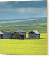 This Is Alberta No.15 - Prairie Barns Wood Print