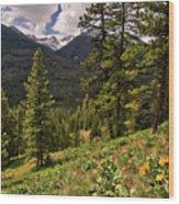 This Is Washington State No.1 - Klipchuck Wood Print by Paul W Sharpe Aka Wizard of Wonders